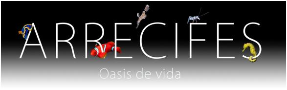 Versión-Digital-documental-producción-España