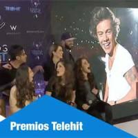 Más de 55.000 personas se dieron cita en los Premios Telehit en los que actuaron One Direction