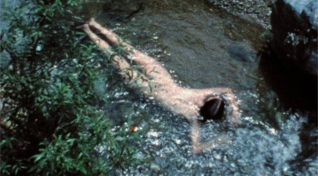 'Creek' de Ana Mendieta.
