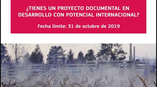 El programa de formación EURODOC tiene abierto el plazo de inscripción