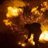 'Lo que arde' (Numax)