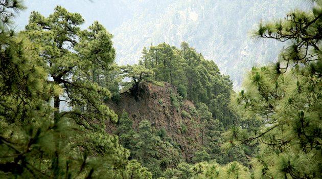 Caldera de Taburiente en La Palma